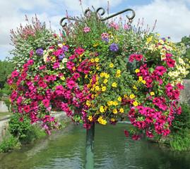 suspensin de fleurs d'été