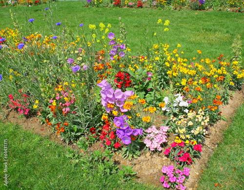 Massif de fleurs dans un jardin public au printemps photo libre de droits sur la banque d - Massif de fleurs photos ...