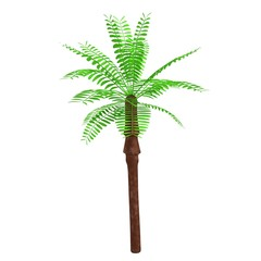 realistic 3d render of palm tree