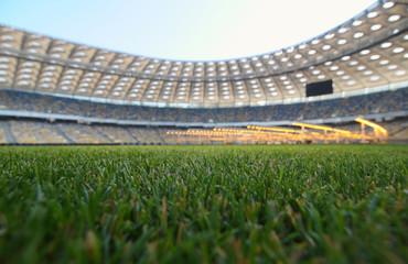 grass on a stadium