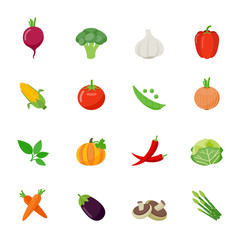 Food icon flat full color