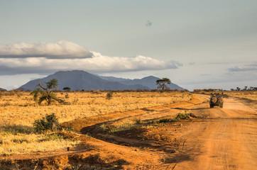 Wall Mural - Jeep nel tramonto della savana