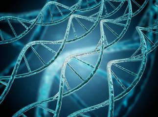 DNA molecules strand