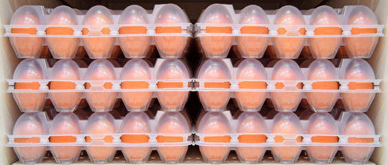 Eggs arranged in a beautiful panel
