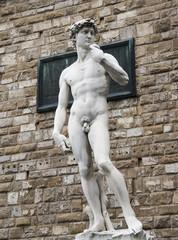 Michelangelo's David statue in Piazza della Signoria, Florence,