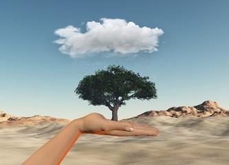 Hand holding tree under a rain cloud against a desert