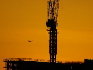 Affiche - Crane Silhouette-6