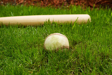 Old Baseball and Bat on Field