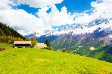 Wall Mural - Meadow near Mont Blanc, Alps in summer