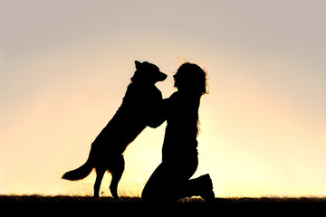 Happy Dog Jumping up to Greet Woman Silhouette