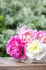 Stunning peonies in white wicker basket on rustic wooden table