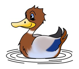 duck illustration