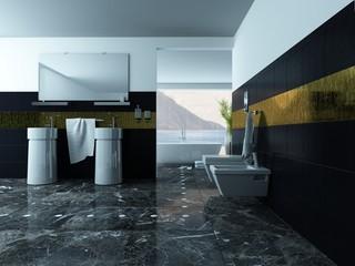 Bathroom interior with wash basin and toilet