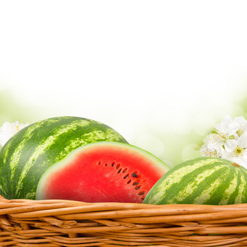 Melon with slice