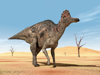 Dinosaur Corythosaurus