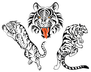 Group of tigers tattoo