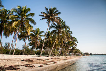 Playa Larga beach, Bay of Pigs,  Cuba,  America