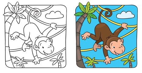 Little funny monkey on lians
