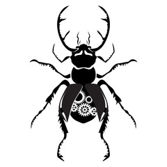 black stag beetle with the mechanism inside