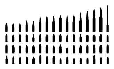 Various types ammunition silhouettes.