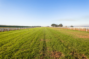 Horse Racing Training Track