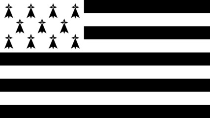 Flag of Brittany - Vector Graphic Wall mural