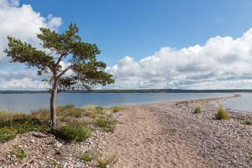 Saaristomeri nationalpark