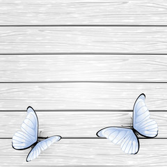 White butterflies on wooden background