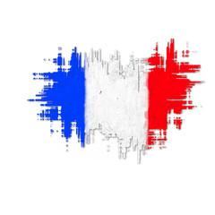 french stylized flag