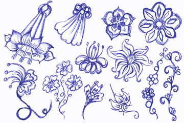 Drawing of flowers a blue pen. Set3