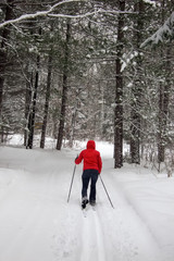 Mid adult woman skiing, Orangeville, Dufferin County, Ontario, C