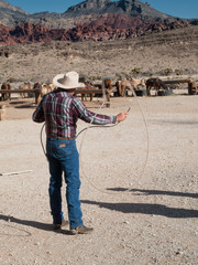 Cowboy lassoing, Death Valley National Park, California, USA