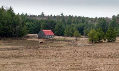 Barn in a village, Tobermory, Ontario, Canada