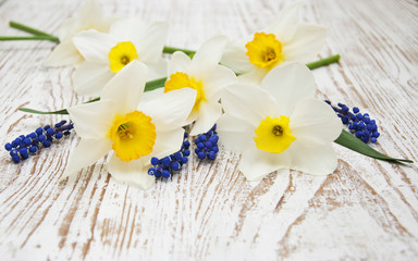 Photo sur Aluminium Narcisse Spring flowers