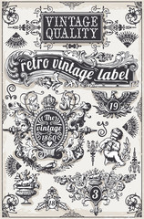 Vintage Hand Drawn Graphic Banner and Label Vector Detailed illustration