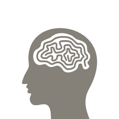 Head a brain