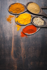 Spices in the spoons. Spice Turmeric, paprika, coriander, masala