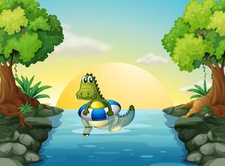 A crocodile at the river