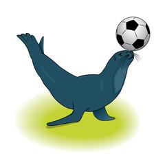 vector sea lion with a ball