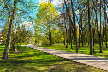 city park in spring sunny day