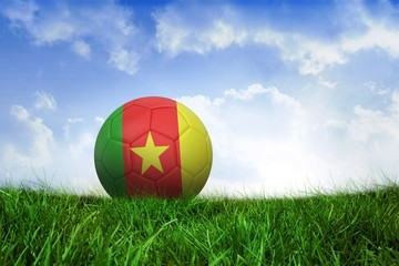Football in cameroon colours