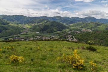 paysage Alsacien