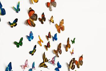 Стая бабочек на белом фоне с пространством для вашего текста