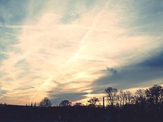 Used Sky