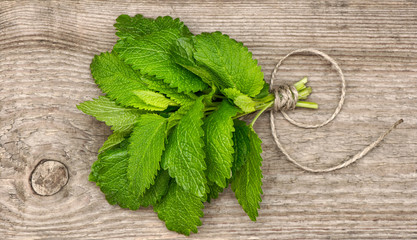 fresh green mint leaves over rustic wooden background
