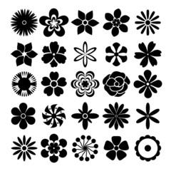 Wall Mural - Vector flowers set