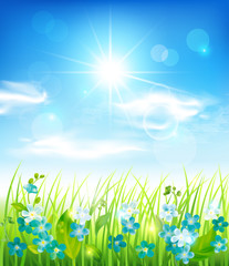 Sunny background with grass and flowers. Vector