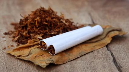 Tobacco and cigarette