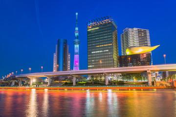 Tuinposter Dubai View of Tokyo skyline from Sumida river
