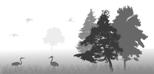 birds in gray forest illustration